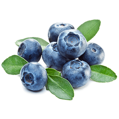Blueberries transparent PNG images.