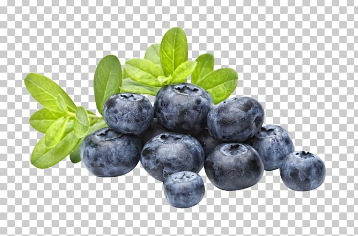 Blueberries PNG, Clipart, Blueberries Free PNG Download.