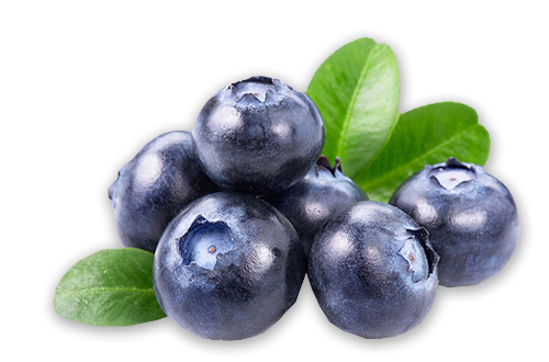 Download Free png Blueberries PNG, Download PNG image with.