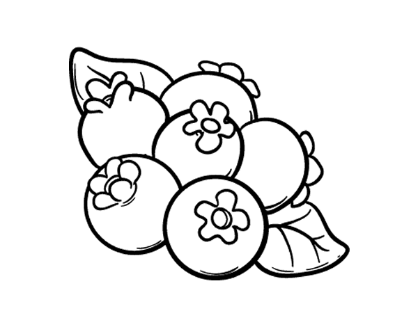 Blueberry clipart black and white, Blueberry black and white.