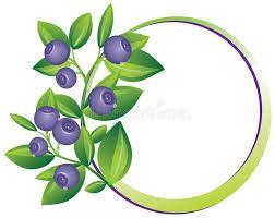 Image result for blueberry border clip art.