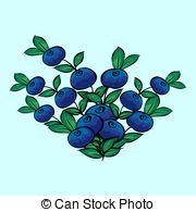 Blue berry Clip Art Vector Graphics. 3,631 Blue berry EPS clipart.
