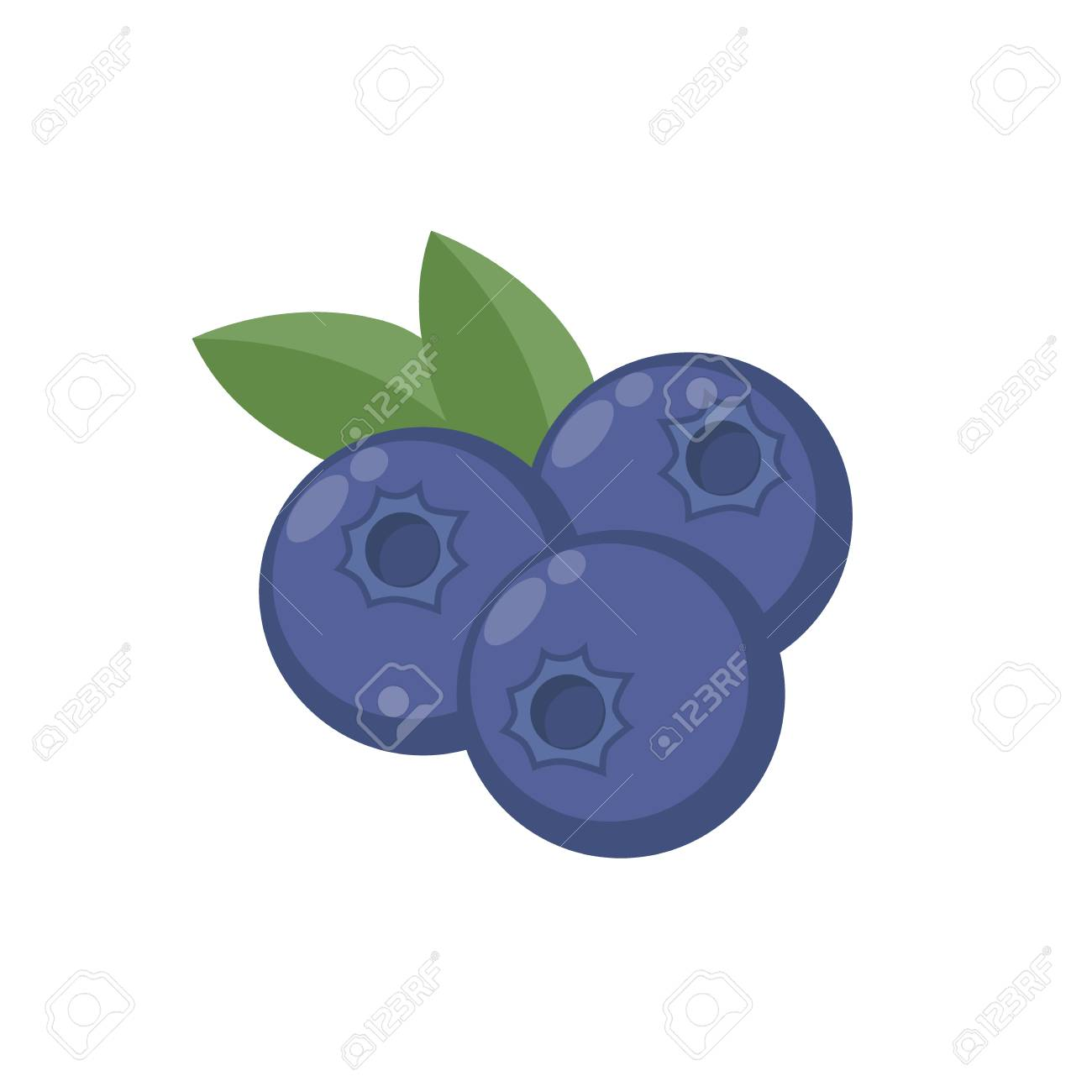 Blueberries with leaf vector icon. Blueberry icon clipart. Blueberry...