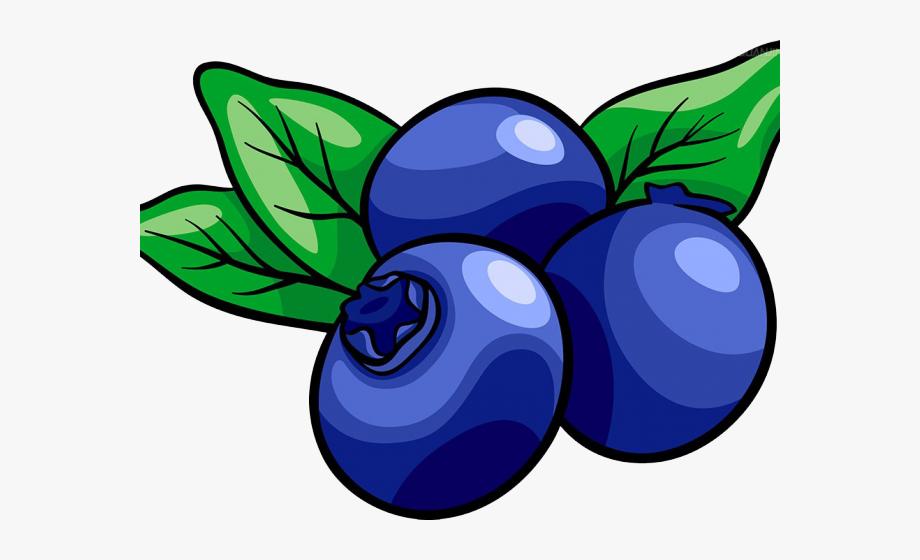 Transparent Background Blueberry Clipart , Transparent.