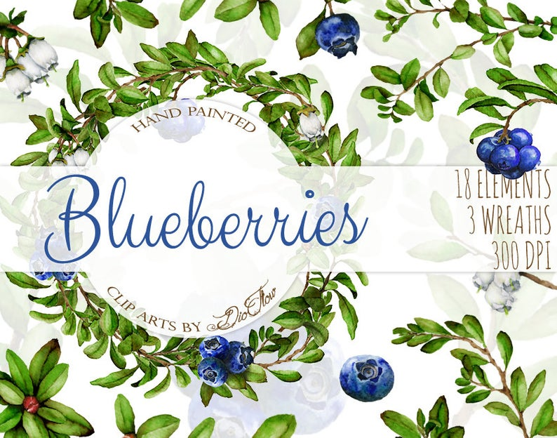 Watercolor Blueberry Clipart Blueberries Clip Art Branches Vines Woodland  Blue Berries Frames Wreath Illustration Vector Wedding Invitation.