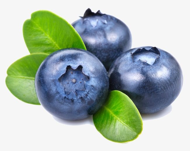 Blueberry, Fruit, Food PNG Transparent Clipart Image and PSD File.