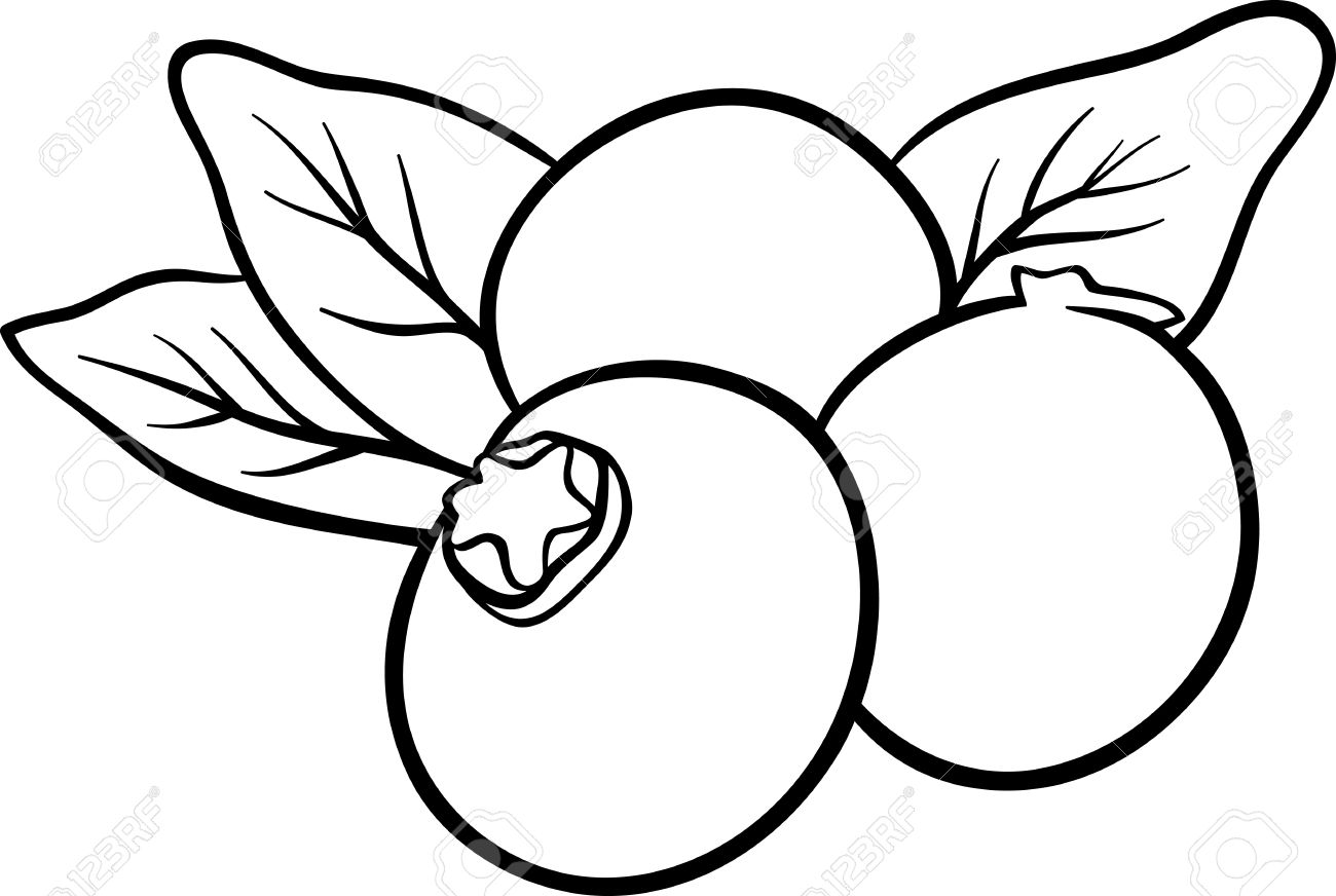 Black and White Cartoon Illustration of Blueberry Fruits Food...