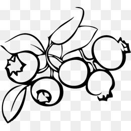 Blueberries Png Black And White & Free Blueberries Black And White.