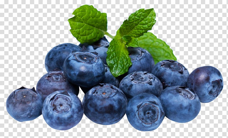 Blueberry Fruit, Blueberries transparent background PNG.