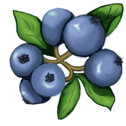 Blueberry clipart blueberry tree, Blueberry blueberry tree.