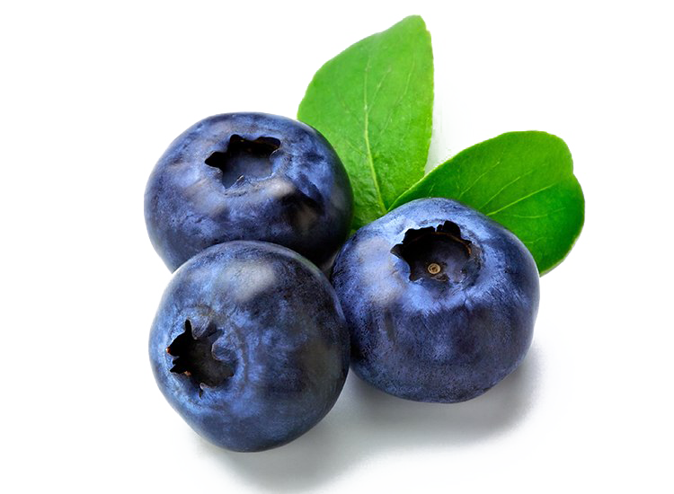 Blueberry Fruit PNG.