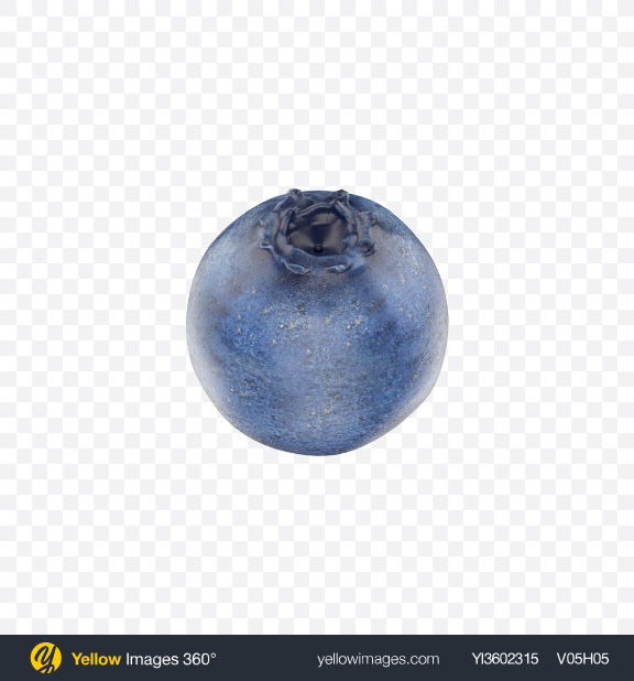 Download Blueberry Transparent PNG on Yellow Images 360°.