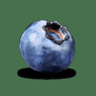 Single Blueberry transparent PNG.