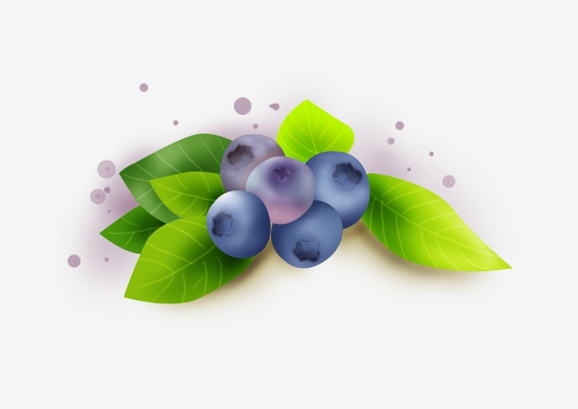 Blueberry Png, Vector, PSD, and Clipart With Transparent Background.