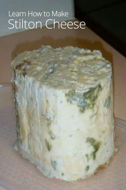 1000+ ideas about Stilton Cheese on Pinterest.