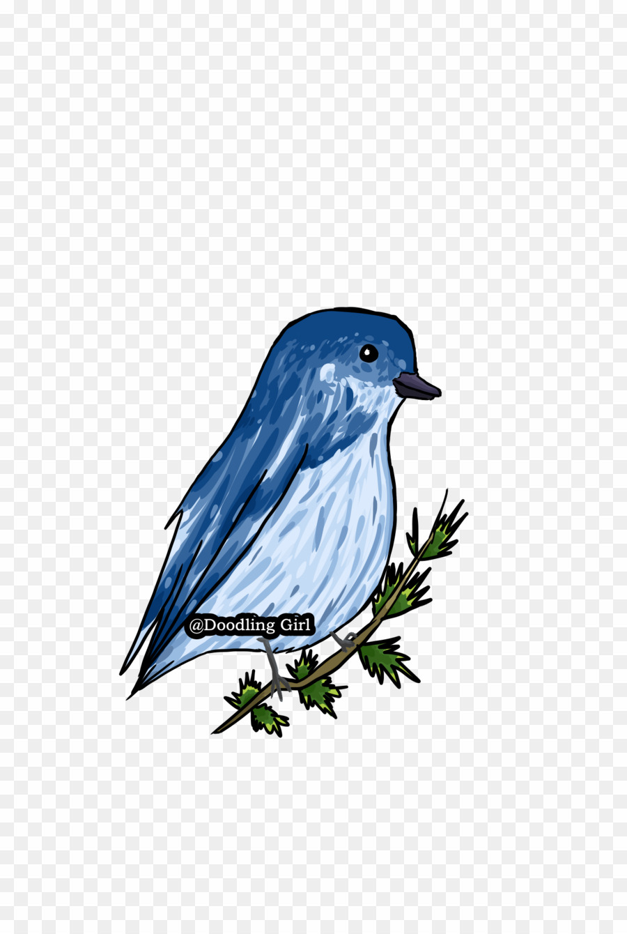 Blue Bird Doodle PNG Bluebirds Clipart download.