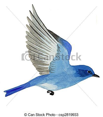 Bluebird Illustrations and Stock Art. 1,055 Bluebird illustration.