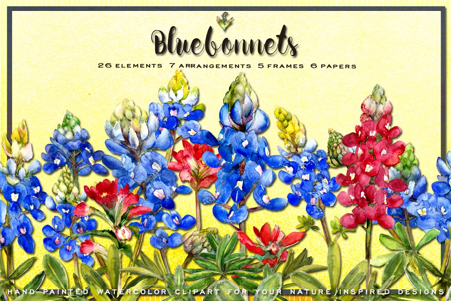 Bluebonnet Watercolor Clip Art ~ Illustrations ~ Creative Market.