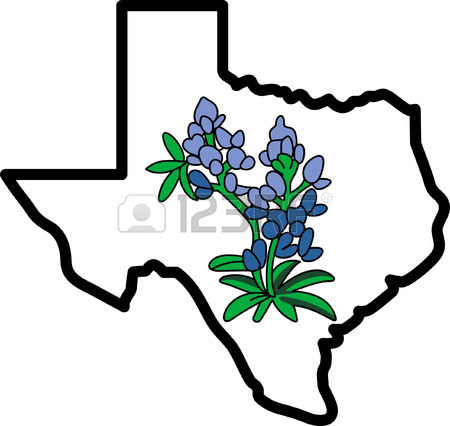 Huge Collection of 'Bluebonnet clipart'. Download more than 40.