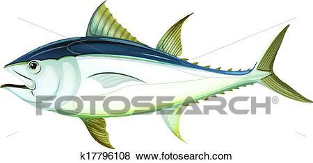 Atlantic bluefin tuna Clip Art.