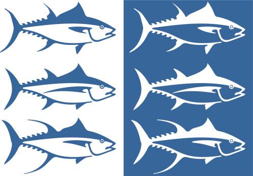 Bluefin Tuna Clip Art Along With Tuna Fish Drawing Moreover.