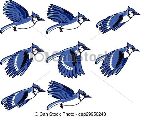 Blue jay Illustrations and Stock Art. 197 Blue jay illustration and.