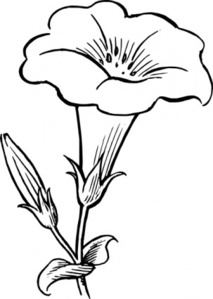 Gamopetalous Blume ClipArt cliparts, kostenlose clipart.