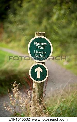 Stock Photo of Bilingual welsh english nature trail sign Bluestone.