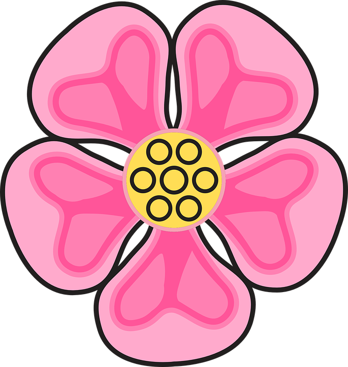 Free vector graphic: Flower, Rose, Wild, Plant, Floral.