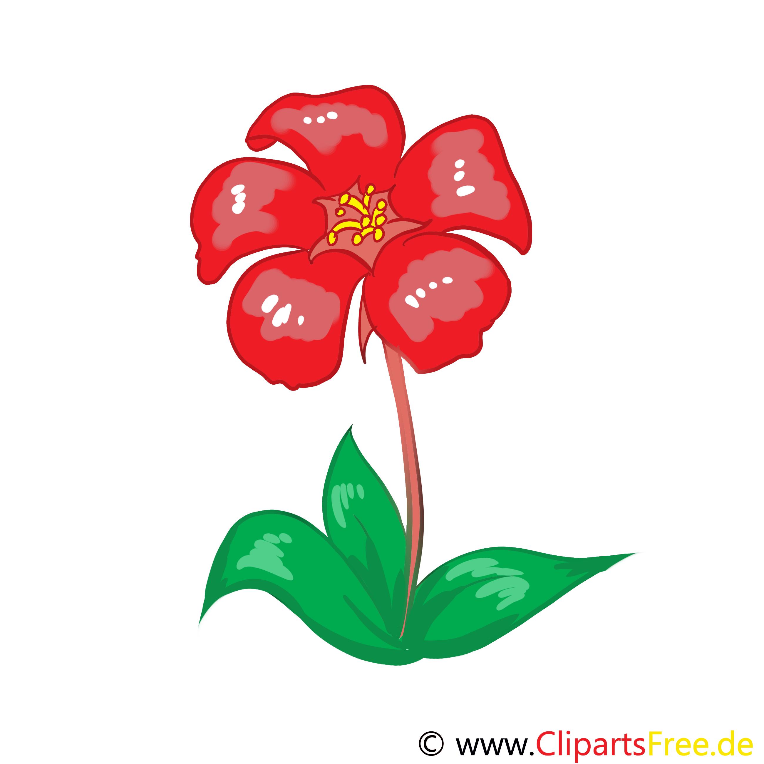Rote Blume Clipart.