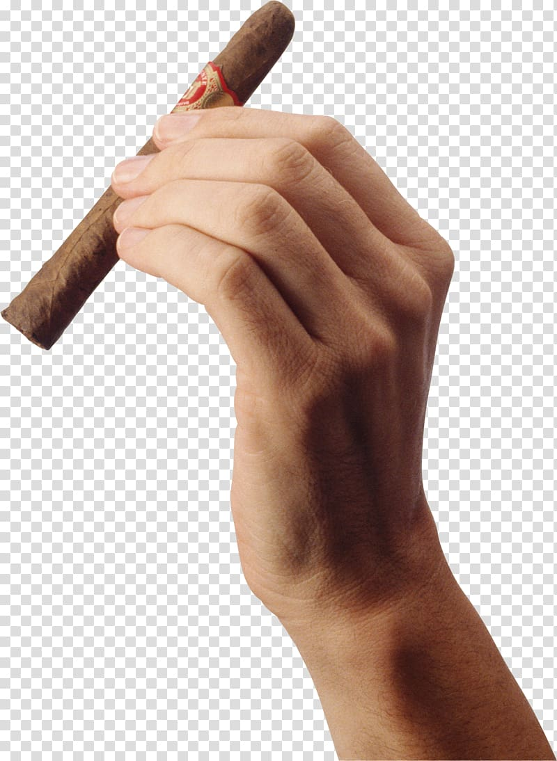 Person left hand holding tobacco, Cigarette Blunt Tobacco pipe.