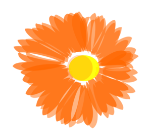 Blurry Orange Flower Clip Art at Clker.com.
