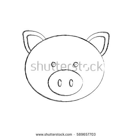 Hog Head Stock Images, Royalty.