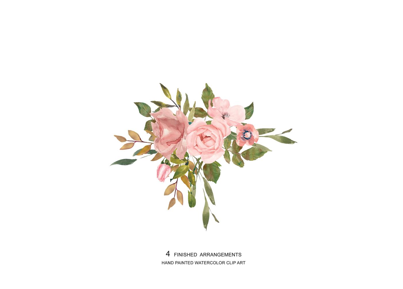 Blush Rose Clipart.