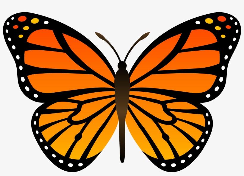 Monarch Butterflies Clipart Library Com Images Dt9x5kn9c.