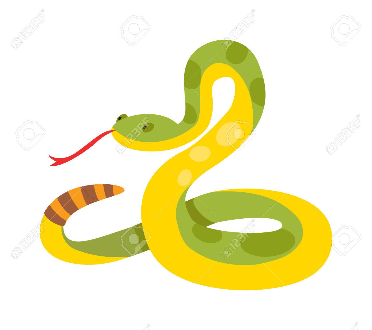 Gold Python Reticulated Albino Boa Constrictor Wildlife Nature.