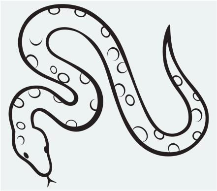 Boa constrictor clipart free.