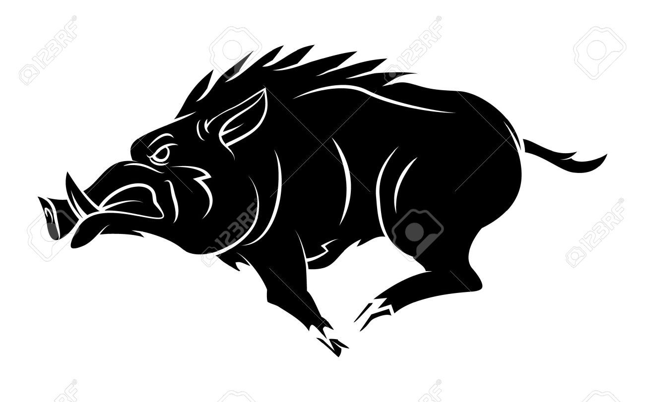 Boar clipart black and white 7 » Clipart Portal.