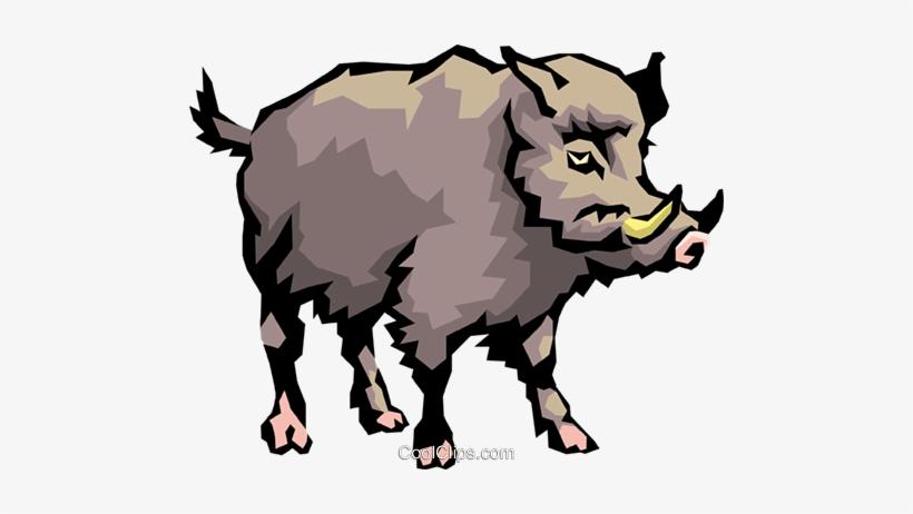 Wild Boar Royalty Free Vector Clip Art Illustration.