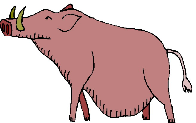 Boar clip art.
