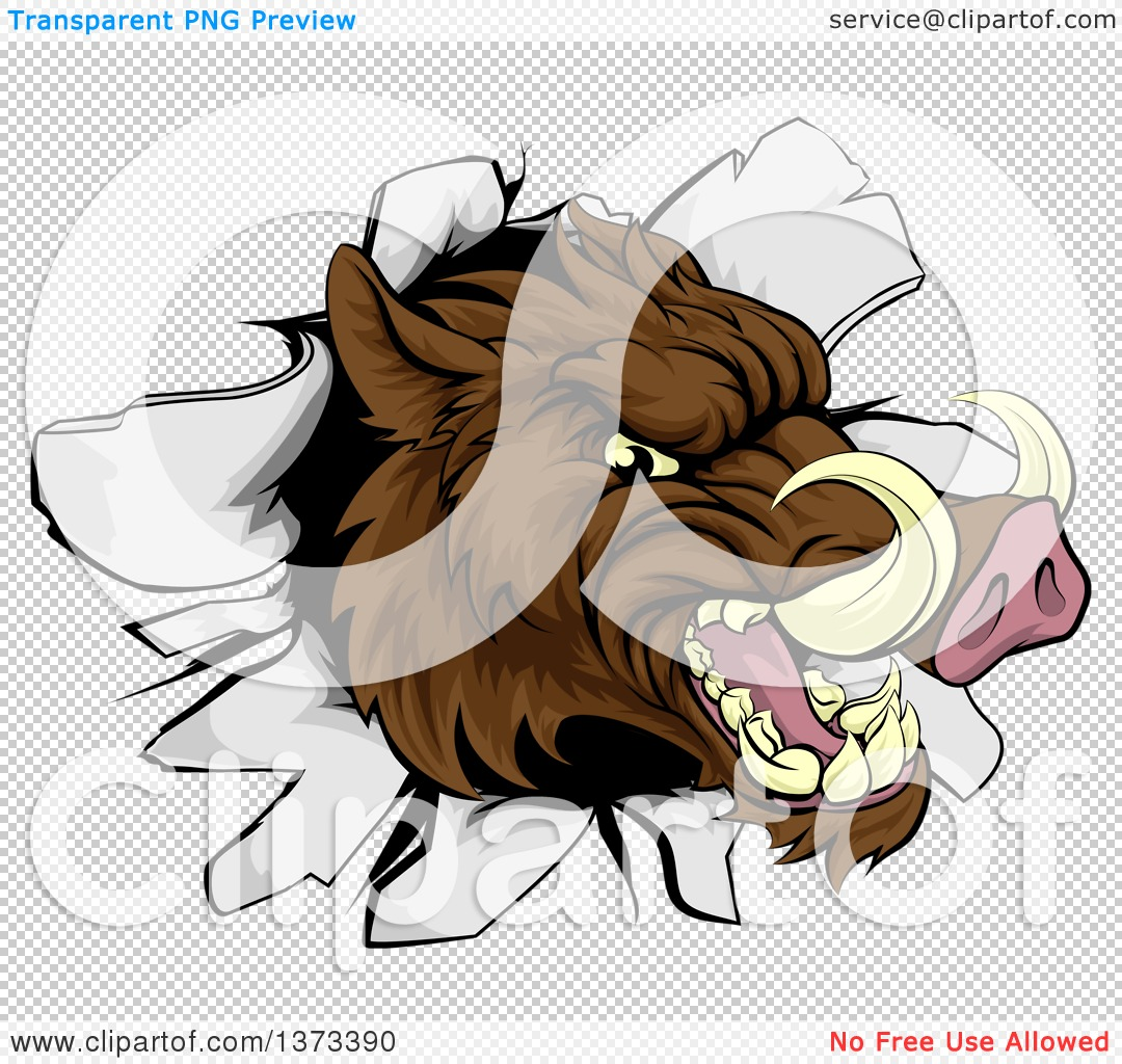 Clipart of a Fierce Brown Boar Head Breaking Through a Wall.