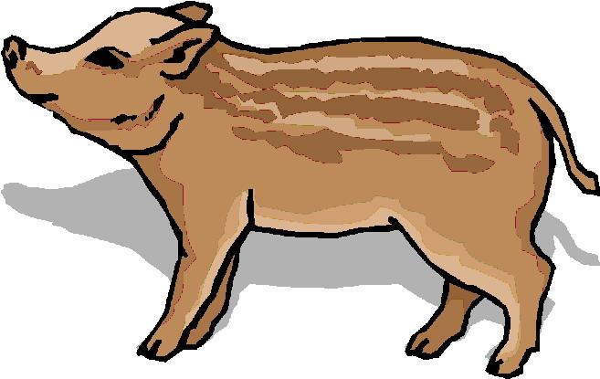 Free Wild Boar Clipart, Download Free Clip Art, Free Clip.