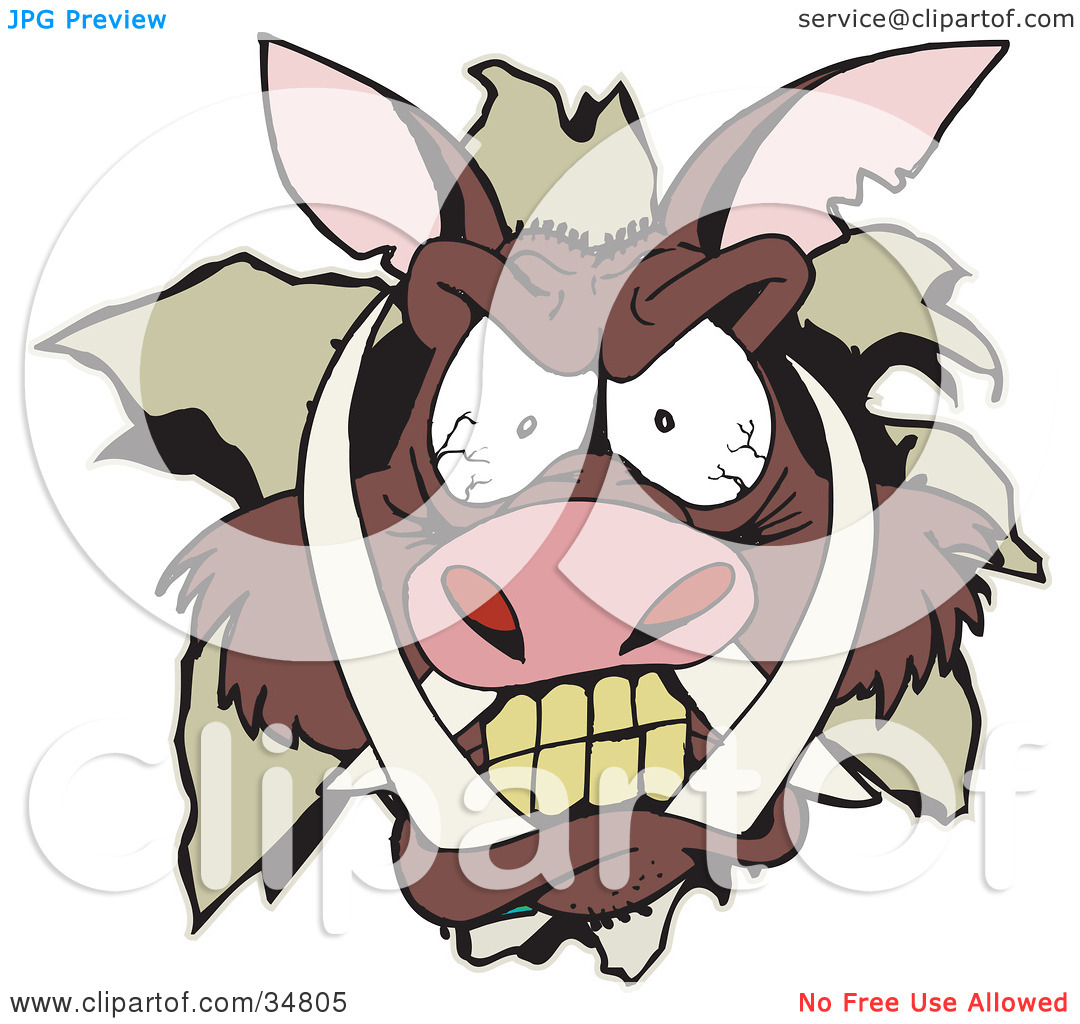 Clipart Illustration of an Angry Boar's Head Breaking Through A.