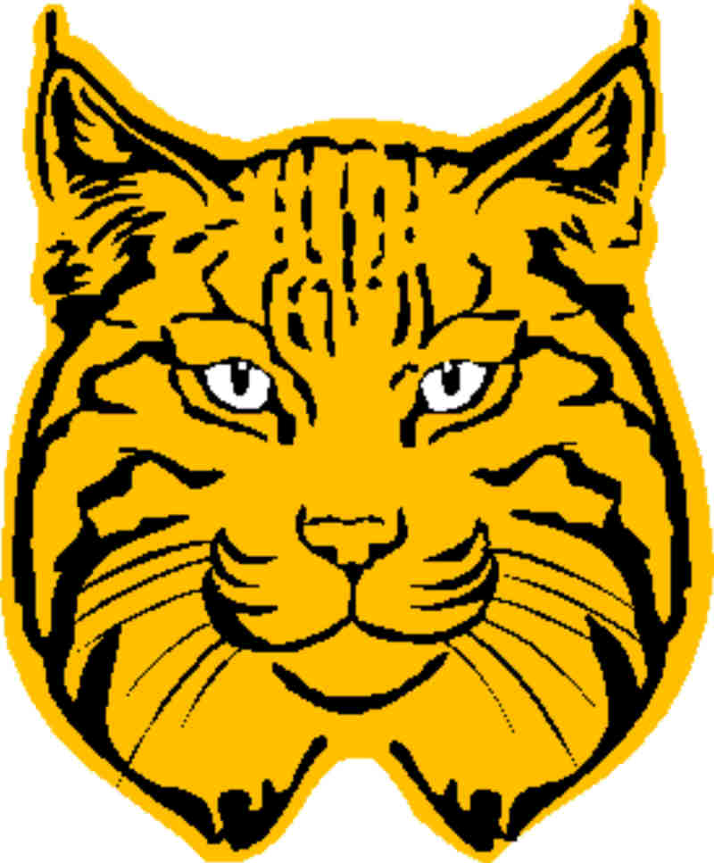 Free Bobcat Cliparts, Download Free Clip Art, Free Clip Art.