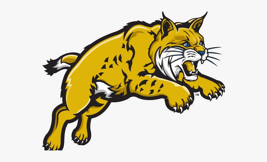 Bobcat Clipart Logo.