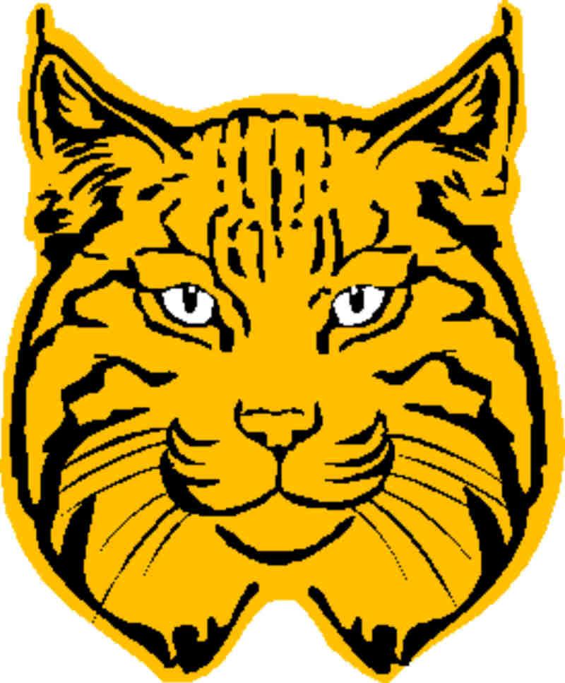 Bobcat Clipart.
