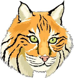 Bobcat Clipart & Bobcat Clip Art Images.