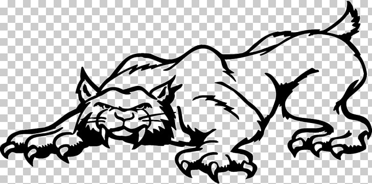 Lion Bobcat Felidae Cartoon , lion PNG clipart.