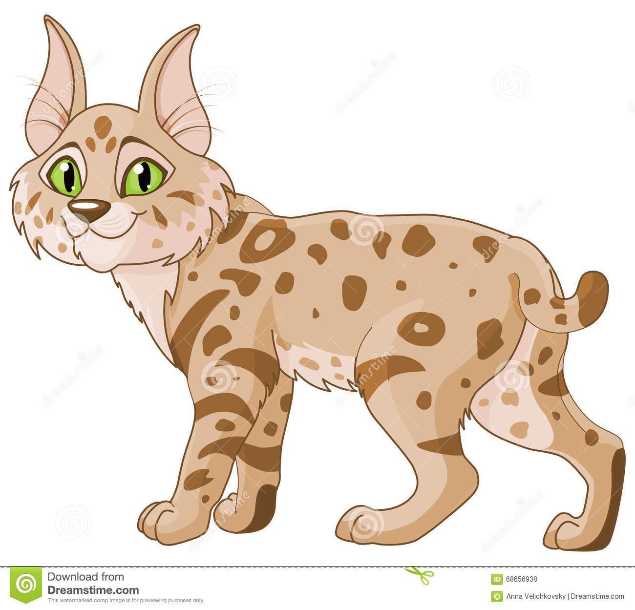 Bobcat stock vector. Illustration of tassel, cute, clipart.