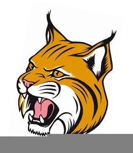 Bobcat Mascots Clipart.